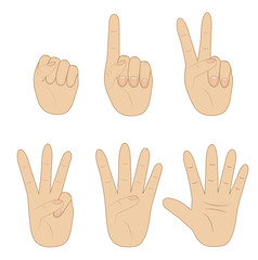 set hand, showing different number on white background