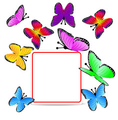 beautiful background with butterflies