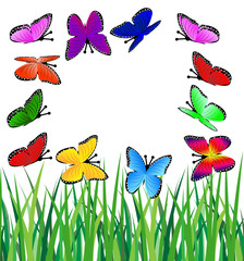 background  with a green grass and butterflies