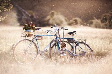 Beautiful landscape image with bicycle