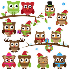 Vector Collection of Christmas Holiday Themed Owls and Branches