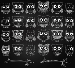 Chalkboard Style Vector Set of Cute Owls and Branches