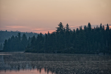 Poster Morning with fog Lake Sunrise in Parc de la Mauricie