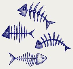 Fish bone. Doodle style
