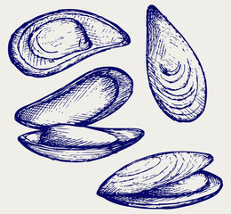 Cooked lipped mussel. Doodle style