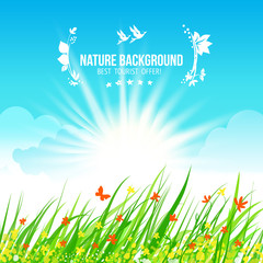 Sky and grass, blue and green background