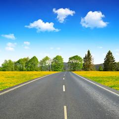 Asphalted road in spring landscape