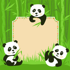 Cartoon frame - bamboo & three little pandas illustration