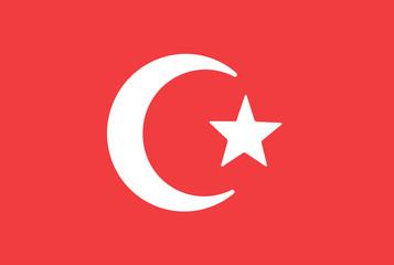 Turkey flag. Vector