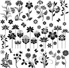 Black floral set I