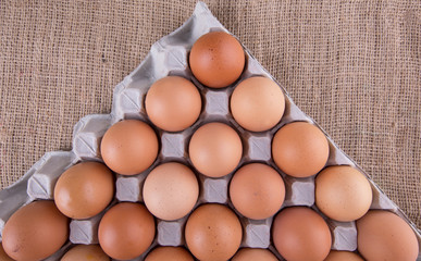Chicken eggs in egg carton