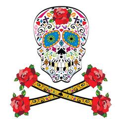 Sugar skull vector on white background