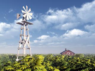 Western Windmill
