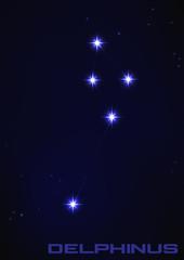 Delphinus constellation