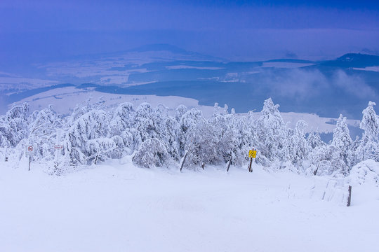 Verschneiter Winter-Wald und Berge