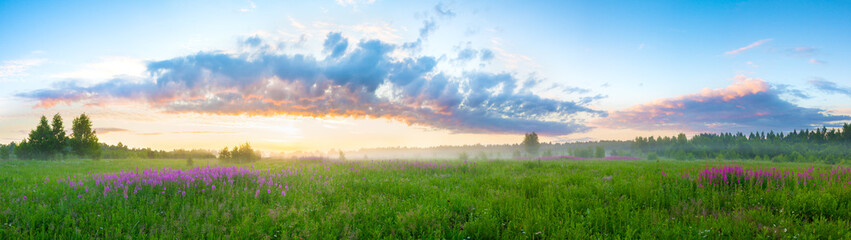 summer  landscape with sunrise