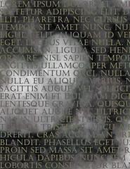 Latin Text Grunge