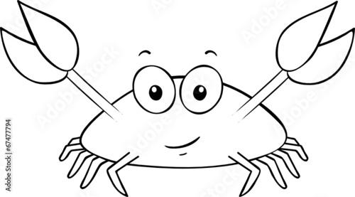 kleine krabbe stockfotos und lizenzfreie vektoren auf