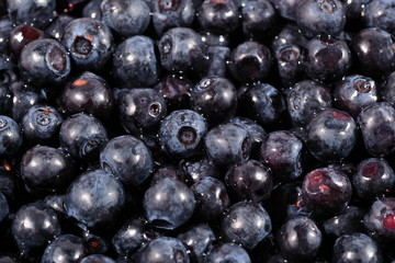 Blueberries fruit close up