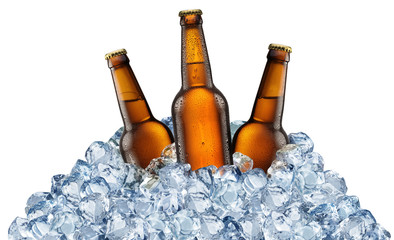 Wall Mural - Three beer bottles getting cool in ice cubes.