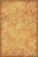 Animal Skin Parchment Grunge Texture Sample