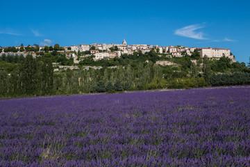 Papiers peints Aubergine Paysage de provence