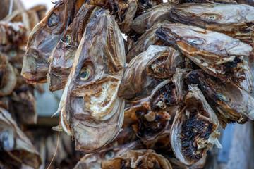 heads of cod fish