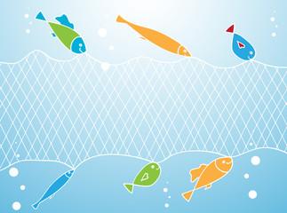 Fish and Fishing Net