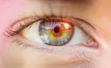 eye macro close up