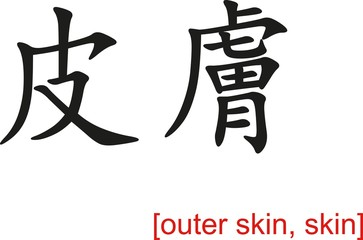 Chinese Sign for outer skin, skin