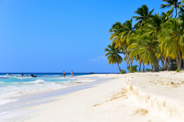 Sandy beach in the Dominican Republic.