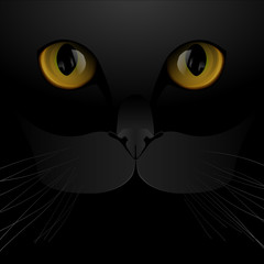 Cat eyes and nose background