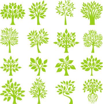 Green Tree set I