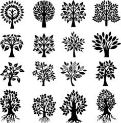 Tree setIV