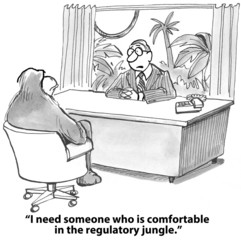 """""""I need someone who is comfortable in the regulatory jungle."""""""