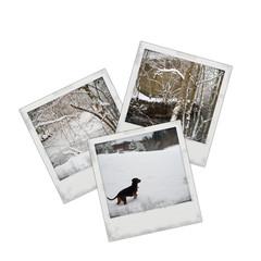 "Photo ""hiver clerjus"""