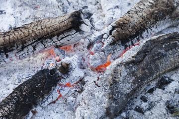 verbranntes Holz © Matthias Buehner