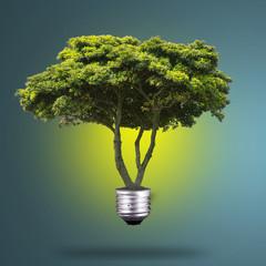 Idea Plant light bulb