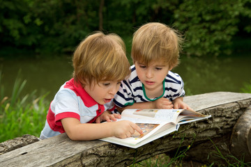 Twin Brothers Looking at Very Interesting Picture in the Book