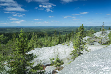 Fototapete - Scenery from Koli national park