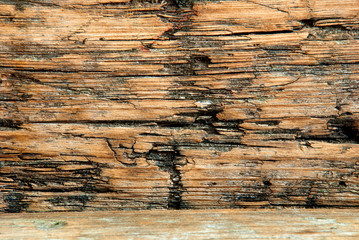 Old Plank