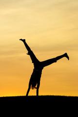 Portrait of a cartwheel.