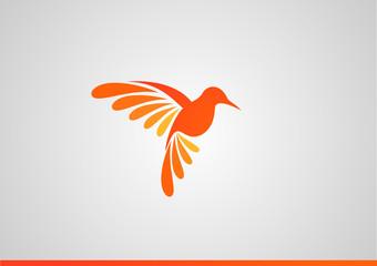 Fototapeta Logo koliber obraz