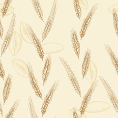 Vector pattern with wheat spikelets
