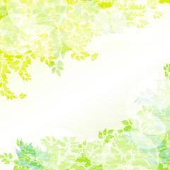 緑と光の背景