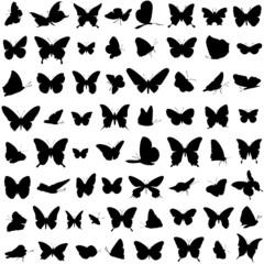 Schmetterlinge Vektor Set