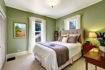 Light green elegant bedroom interior