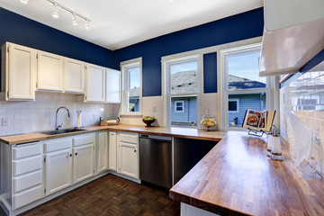 Kitchen interior in bright navy and white colors