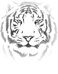 Fototapete - tiger head in black interpretation 4