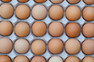 large group of eggs in a cardboard tray